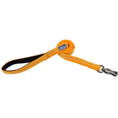 K9 Explorer® Brights Reflective Dog Leash Product image