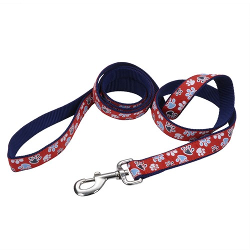 Ribbon Dog Leash Product image