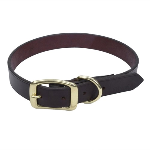 Circle T® Latigo Leather Town Dog Collar with Solid Brass Hardware Product image