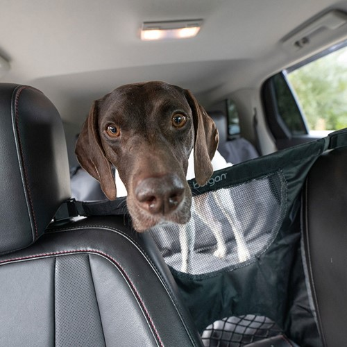 Bergan® Auto Travel Dog Barrier Product image