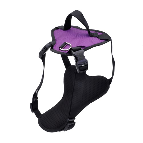 Inspire Harness Product image